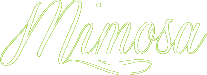 Bloemen Mimosa  - Heist-Op-Den-Berg